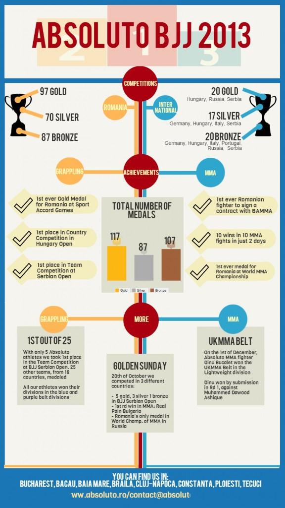 infografic 2013