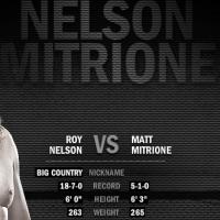 Nelson-vs.-Mitrione-Fight-Prediction